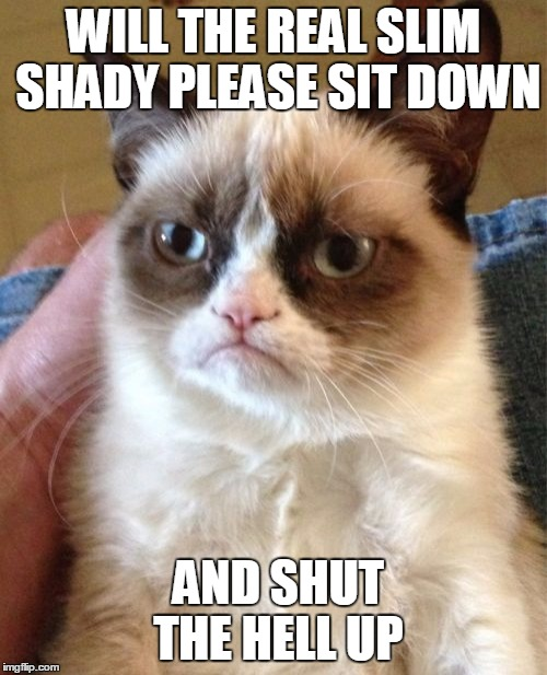Slim Shady | WILL THE REAL SLIM SHADY PLEASE SIT DOWN AND SHUT THE HELL UP | image tagged in memes,grumpy cat,eminem,slim shady,music,meme | made w/ Imgflip meme maker