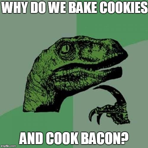 Philosoraptor Meme | WHY DO WE BAKE COOKIES AND COOK BACON? | image tagged in memes,philosoraptor | made w/ Imgflip meme maker