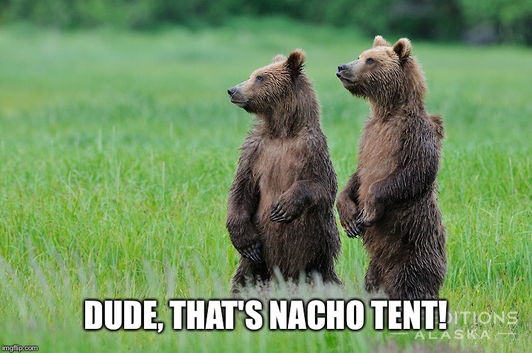 DUDE, THAT'S NACHO TENT! | made w/ Imgflip meme maker