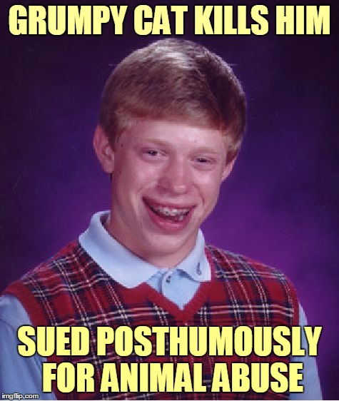 Bad Luck Brian Meme | GRUMPY CAT KILLS HIM SUED POSTHUMOUSLY FOR ANIMAL ABUSE | image tagged in memes,bad luck brian | made w/ Imgflip meme maker