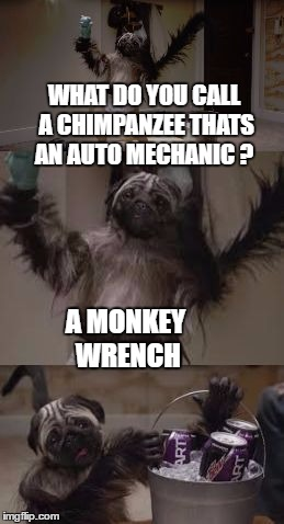 puppy monkey baby mechanic |  WHAT DO YOU CALL A CHIMPANZEE THATS AN AUTO MECHANIC ? A MONKEY WRENCH | image tagged in bad pun puppy monkey baby,memes,bad pun,puppy monkey baby | made w/ Imgflip meme maker