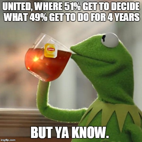 But Thats None Of My Business Meme | UNITED, WHERE 51% GET TO DECIDE WHAT 49% GET TO DO FOR 4 YEARS BUT YA KNOW. | image tagged in memes,but thats none of my business,kermit the frog | made w/ Imgflip meme maker