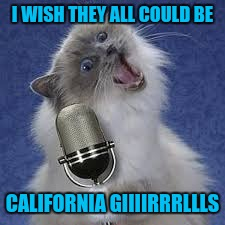 I WISH THEY ALL COULD BE CALIFORNIA GIIIIRRRLLLS | made w/ Imgflip meme maker