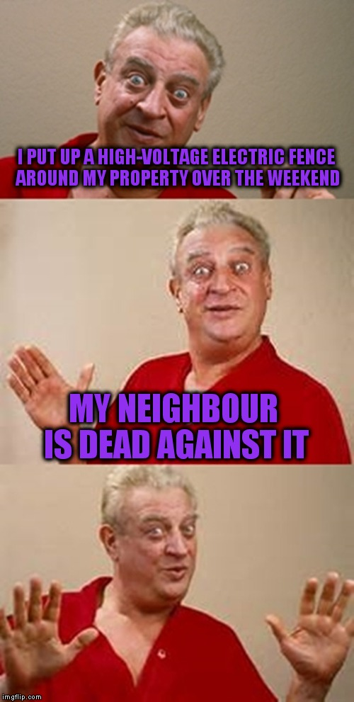 bad pun Dangerfield  | I PUT UP A HIGH-VOLTAGE ELECTRIC FENCE AROUND MY PROPERTY OVER THE WEEKEND MY NEIGHBOUR IS DEAD AGAINST IT | image tagged in bad pun dangerfield | made w/ Imgflip meme maker