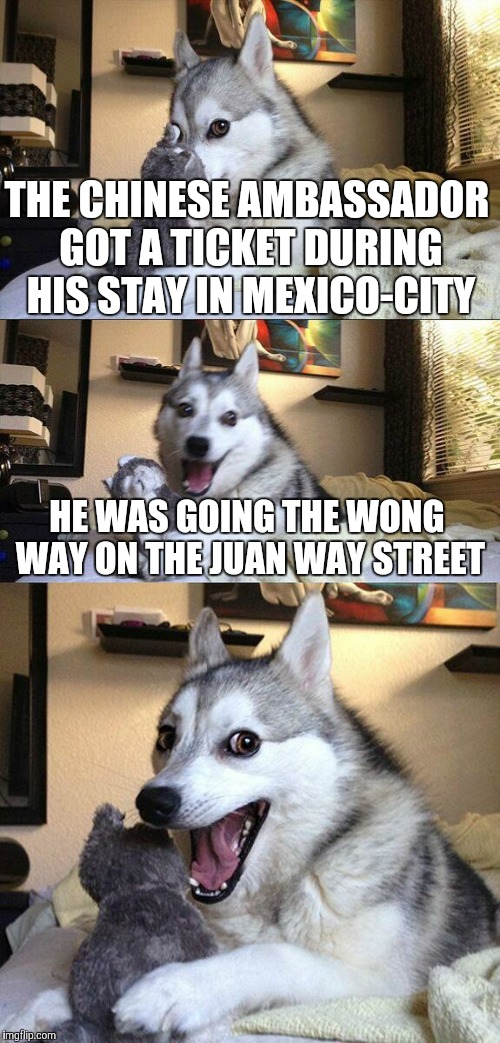 Bad Pun Dog Meme | THE CHINESE AMBASSADOR GOT A TICKET DURING HIS STAY IN MEXICO-CITY HE WAS GOING THE WONG WAY ON THE JUAN WAY STREET | image tagged in memes,bad pun dog | made w/ Imgflip meme maker