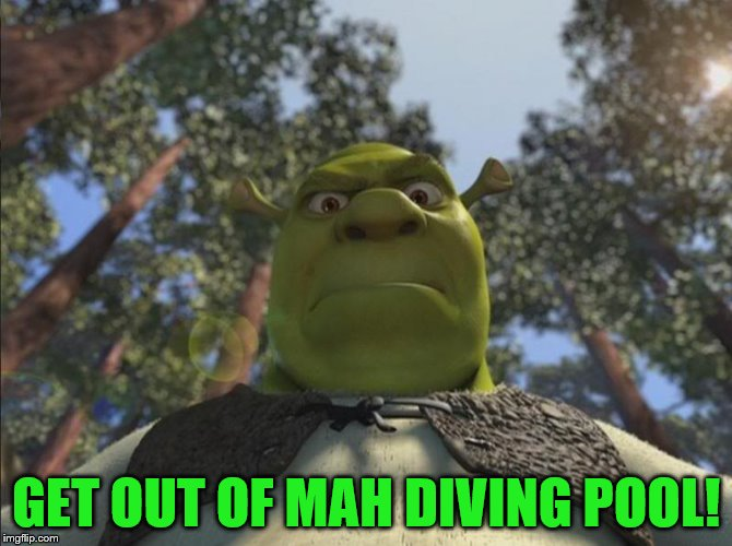 That explains it... |  GET OUT OF MAH DIVING POOL! | image tagged in shrek angry,memes,sport,green diving pool,rio olympics,olympics | made w/ Imgflip meme maker
