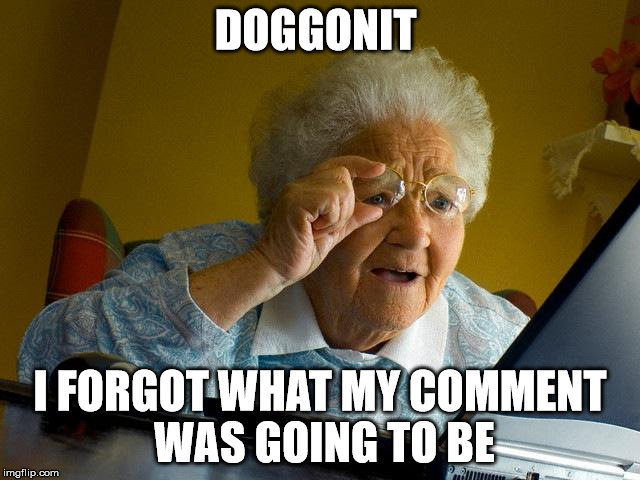 Grandma Finds The Internet Meme | DOGGONIT I FORGOT WHAT MY COMMENT WAS GOING TO BE | image tagged in memes,grandma finds the internet | made w/ Imgflip meme maker