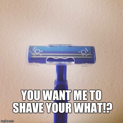 YOU WANT ME TO SHAVE YOUR WHAT!? | image tagged in shaved,razor,faces | made w/ Imgflip meme maker