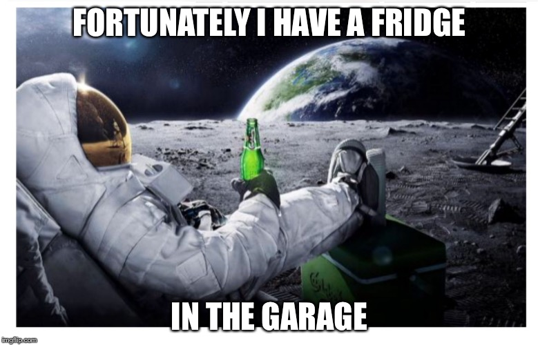 Lunar brew | FORTUNATELY I HAVE A FRIDGE IN THE GARAGE | image tagged in lunar brew | made w/ Imgflip meme maker
