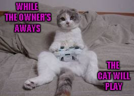 He probably beat the high score too... | WHILE THE OWNER'S AWAYS THE CAT WILL PLAY | image tagged in cat xbox,memes,funny cats,funny,cats,animals | made w/ Imgflip meme maker