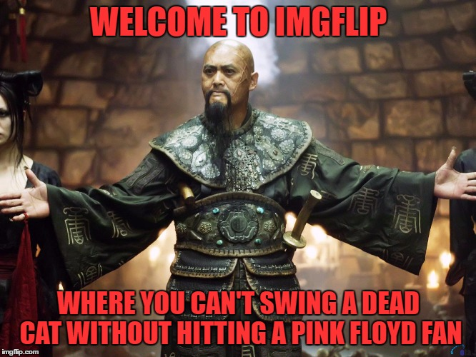 not necessarily a bad thing | WELCOME TO IMGFLIP WHERE YOU CAN'T SWING A DEAD CAT WITHOUT HITTING A PINK FLOYD FAN | image tagged in welcome to singapore | made w/ Imgflip meme maker