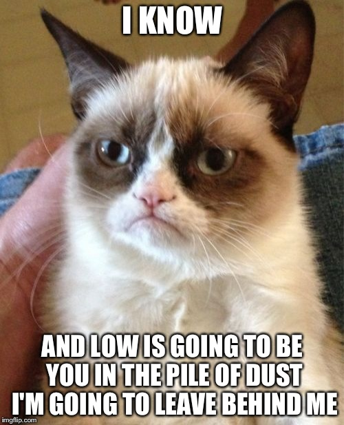 Grumpy Cat Meme | I KNOW AND LOW IS GOING TO BE YOU IN THE PILE OF DUST I'M GOING TO LEAVE BEHIND ME | image tagged in memes,grumpy cat | made w/ Imgflip meme maker