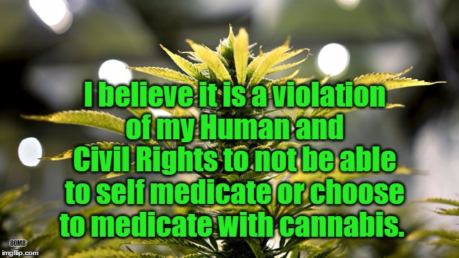 80M8 I believe it is a violation of my Human and Civil Rights to not be able to self medicate or choose to medicate with cannabis. | image tagged in cannabis,marijuana,medical marijuana,dea,human rights,civil rights | made w/ Imgflip meme maker