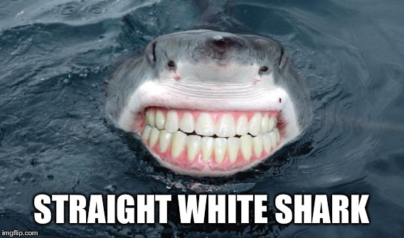 STRAIGHT WHITE SHARK | made w/ Imgflip meme maker
