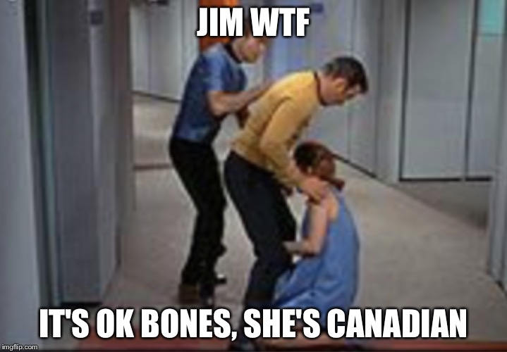 Job promotion | JIM WTF IT'S OK BONES, SHE'S CANADIAN | image tagged in job promotion | made w/ Imgflip meme maker