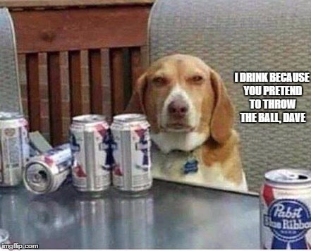 Dave's An Asshole | I DRINK BECAUSE YOU PRETEND TO THROW THE BALL, DAVE | image tagged in dogs | made w/ Imgflip meme maker