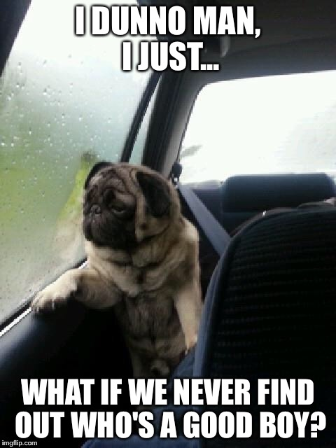 Introspective Pug | I DUNNO MAN, I JUST... WHAT IF WE NEVER FIND OUT WHO'S A GOOD BOY? | image tagged in introspective pug | made w/ Imgflip meme maker