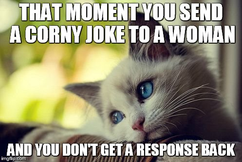 First World Problems Cat |  THAT MOMENT YOU SEND A CORNY JOKE TO A WOMAN; AND YOU DON'T GET A RESPONSE BACK | image tagged in memes,first world problems cat | made w/ Imgflip meme maker