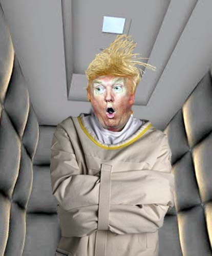 High Quality Straight Jacket Trump Blank Meme Template