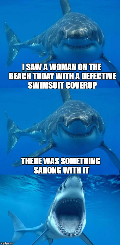 wardrobe malfuntion | I SAW A WOMAN ON THE BEACH TODAY WITH A DEFECTIVE SWIMSUIT COVERUP THERE WAS SOMETHING SARONG WITH IT | image tagged in bad shark pun,beach,swimsuit,bad pun | made w/ Imgflip meme maker