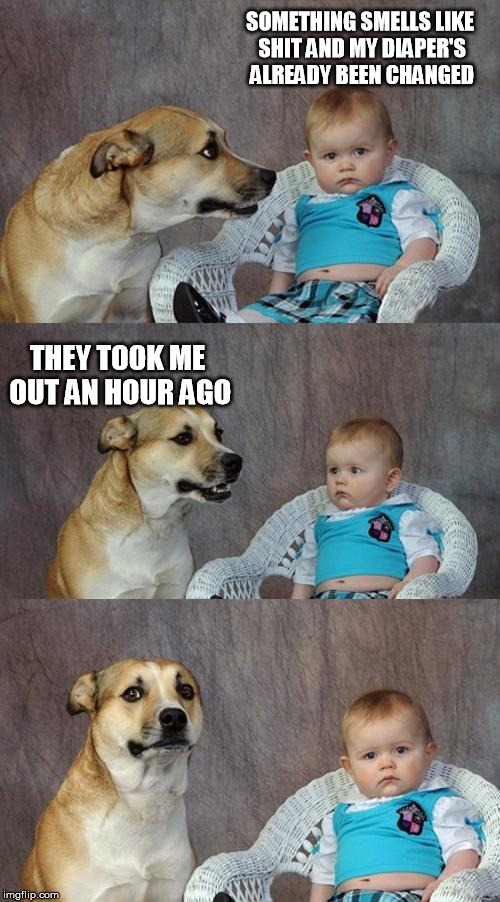 Dad Joke Dog | SOMETHING SMELLS LIKE SHIT AND MY DIAPER'S ALREADY BEEN CHANGED THEY TOOK ME OUT AN HOUR AGO | image tagged in memes,dad joke dog,shit,stinks,stink,bad smell | made w/ Imgflip meme maker