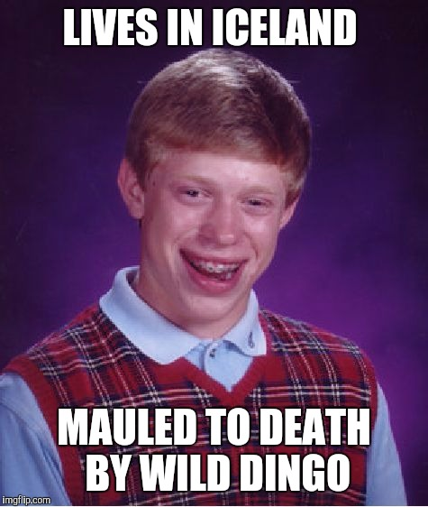 Bad Luck Brian Meme | LIVES IN ICELAND MAULED TO DEATH BY WILD DINGO | image tagged in memes,bad luck brian | made w/ Imgflip meme maker