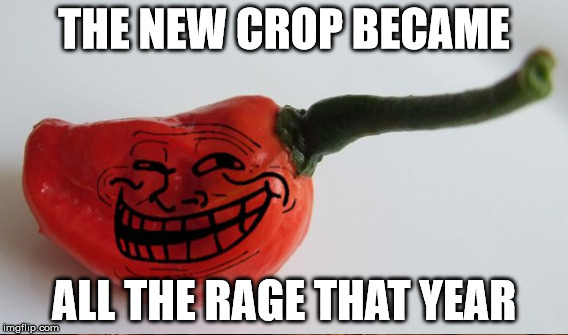 THE NEW CROP BECAME ALL THE RAGE THAT YEAR | made w/ Imgflip meme maker