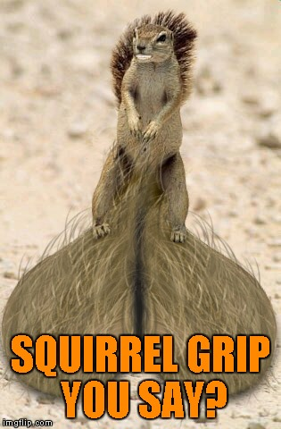 SQUIRREL GRIP YOU SAY? | made w/ Imgflip meme maker