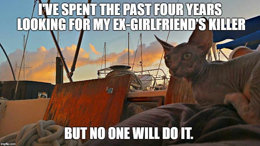 Ex killer MrFluffyBoatHag  | I'VE SPENT THE PAST FOUR YEARS LOOKING FOR MY EX-GIRLFRIEND'S KILLER BUT NO ONE WILL DO IT. | image tagged in ex girlfriend,ex boyfriend,hitman,hairless,cat | made w/ Imgflip meme maker