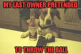 MY LAST OWNER PRETENDED TO THROW THE BALL | made w/ Imgflip meme maker