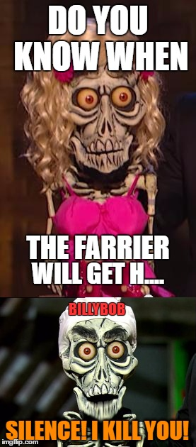 Only Horse Owners will get it! |  DO YOU KNOW WHEN; THE FARRIER; WILL GET H.... BILLYBOB; SILENCE! I KILL YOU! | image tagged in achmed,horse,horses,farrier,horseshoe,time | made w/ Imgflip meme maker