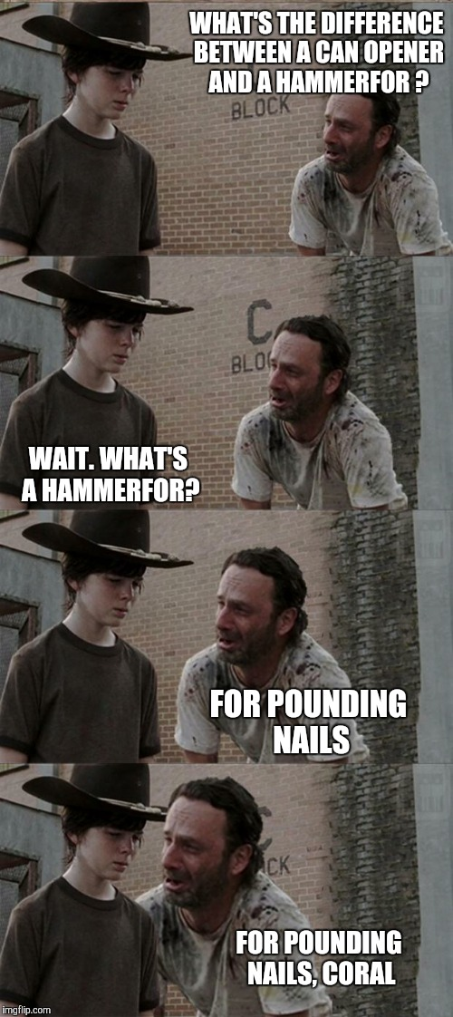 An old one but a bad one | WHAT'S THE DIFFERENCE BETWEEN A CAN OPENER AND A HAMMERFOR ? FOR POUNDING NAILS, CORAL WAIT. WHAT'S A HAMMERFOR? FOR POUNDING NAILS | image tagged in memes,rick and carl long | made w/ Imgflip meme maker
