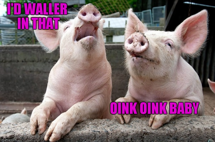 I'D WALLER IN THAT OINK OINK BABY | made w/ Imgflip meme maker