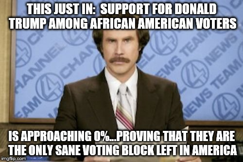 Ron Burgundy Meme |  THIS JUST IN:  SUPPORT FOR DONALD TRUMP AMONG AFRICAN AMERICAN VOTERS; IS APPROACHING 0%...PROVING THAT THEY ARE THE ONLY SANE VOTING BLOCK LEFT IN AMERICA | image tagged in memes,ron burgundy | made w/ Imgflip meme maker
