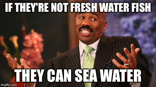 Steve Harvey Meme | IF THEY'RE NOT FRESH WATER FISH THEY CAN SEA WATER | image tagged in memes,steve harvey | made w/ Imgflip meme maker