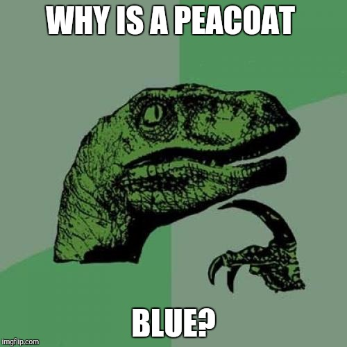 Shouldn't it be green? | WHY IS A PEACOAT BLUE? | image tagged in memes,philosoraptor | made w/ Imgflip meme maker