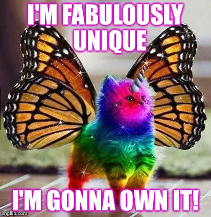 Rainbow unicorn butterfly kitten | I'M FABULOUSLY   UNIQUE I'M GONNA OWN IT! | image tagged in rainbow unicorn butterfly kitten,self esteem,identity,identity crisis,memes,self-worth | made w/ Imgflip meme maker