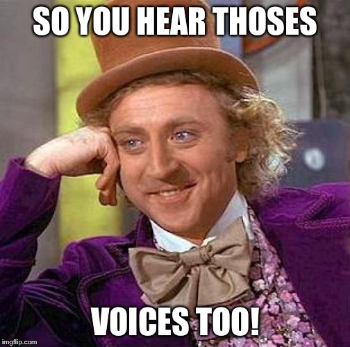 Creepy Condescending Wonka Meme | SO YOU HEAR THOSES VOICES TOO! | image tagged in memes,creepy condescending wonka | made w/ Imgflip meme maker