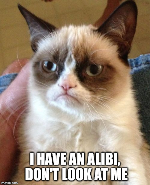 Grumpy Cat Meme | I HAVE AN ALIBI, DON'T LOOK AT ME | image tagged in memes,grumpy cat | made w/ Imgflip meme maker