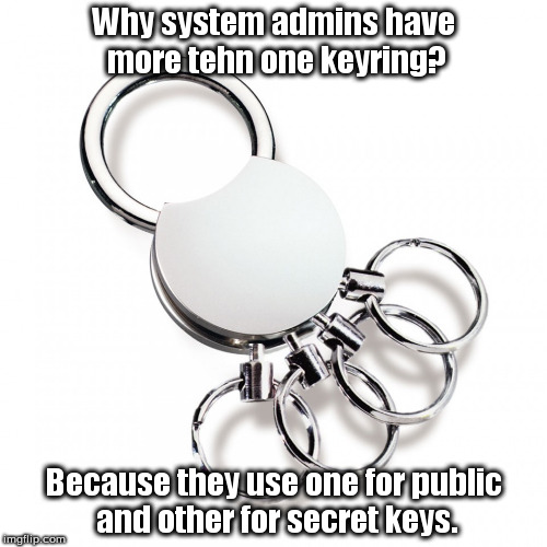 Why system admins should have multiple keyrings. | Why system admins have more tehn one keyring? Because they use one for public and other for secret keys. | image tagged in systemadmin,sysadmin,keys,public,secret,privacy | made w/ Imgflip meme maker