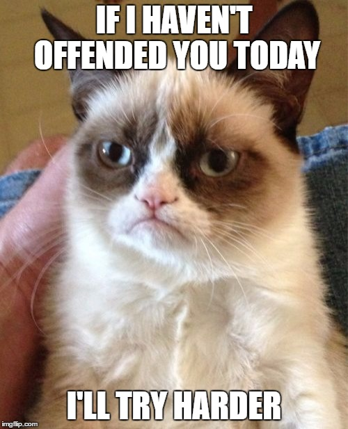Grumpy Cat Meme | IF I HAVEN'T OFFENDED YOU TODAY I'LL TRY HARDER | image tagged in memes,grumpy cat | made w/ Imgflip meme maker