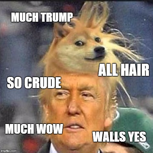 I very rarely do political memes, however a picture like this must be seen!!  | MUCH TRUMP ALL HAIR SO CRUDE MUCH WOW WALLS YES | image tagged in donald trump,doge,lynch1979,why not let sleeping doges lie | made w/ Imgflip meme maker