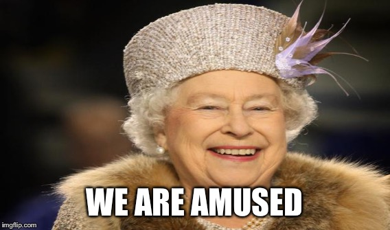 WE ARE AMUSED | made w/ Imgflip meme maker
