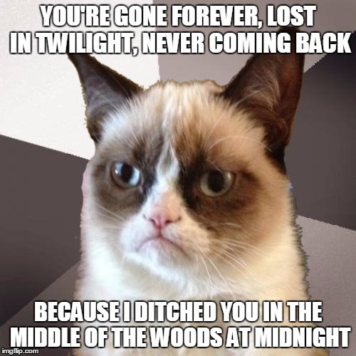 Grumpy Cat Sings Orden Ogan | YOU'RE GONE FOREVER, LOST IN TWILIGHT, NEVER COMING BACK BECAUSE I DITCHED YOU IN THE MIDDLE OF THE WOODS AT MIDNIGHT | image tagged in musically malicious grumpy cat,memes,music,reference,heavy metal,funny | made w/ Imgflip meme maker