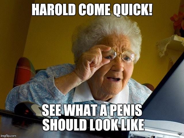 Grandma Finds The Internet Meme | HAROLD COME QUICK! SEE WHAT A P**IS SHOULD LOOK LIKE | image tagged in memes,grandma finds the internet | made w/ Imgflip meme maker