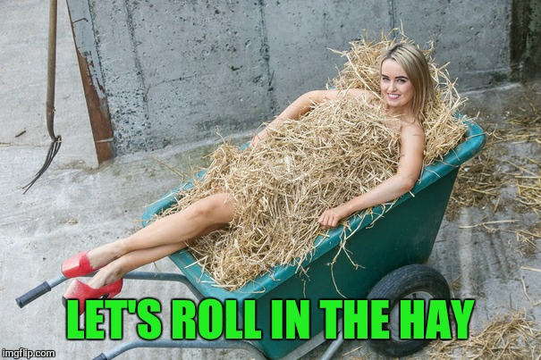 LET'S ROLL IN THE HAY | made w/ Imgflip meme maker