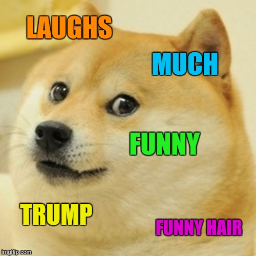 Doge Meme | LAUGHS MUCH FUNNY TRUMP FUNNY HAIR | image tagged in memes,doge | made w/ Imgflip meme maker