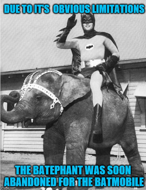The Bat-tuna was pretty much a failure too. | DUE TO IT'S  OBVIOUS LIMITATIONS THE BATEPHANT WAS SOON ABANDONED FOR THE BATMOBILE | image tagged in memes,holy elephant crap,batman | made w/ Imgflip meme maker