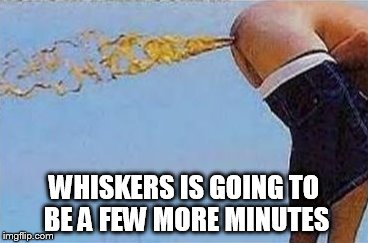 WHISKERS IS GOING TO BE A FEW MORE MINUTES | made w/ Imgflip meme maker
