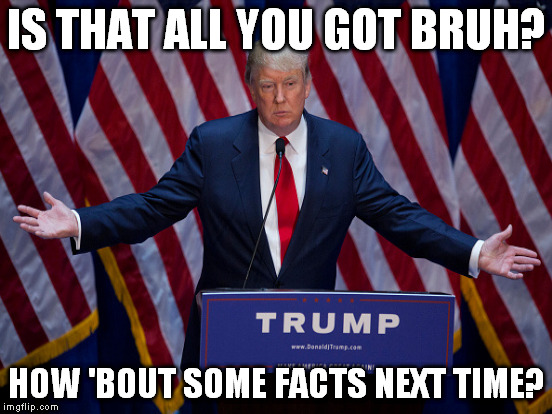 IS THAT ALL YOU GOT BRUH? HOW 'BOUT SOME FACTS NEXT TIME? | made w/ Imgflip meme maker